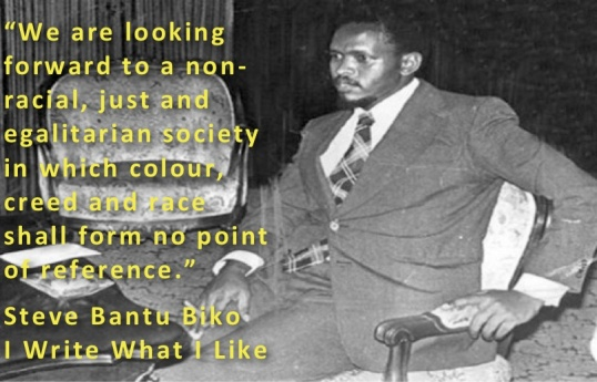steve-biko-egalitarian-society1