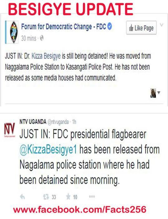 FDC NTV