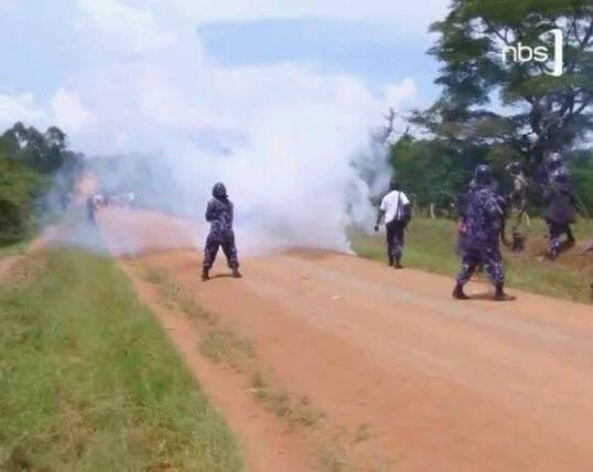 Sembabula NRM NBS