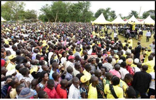 Zirowe NRM 091115 P2