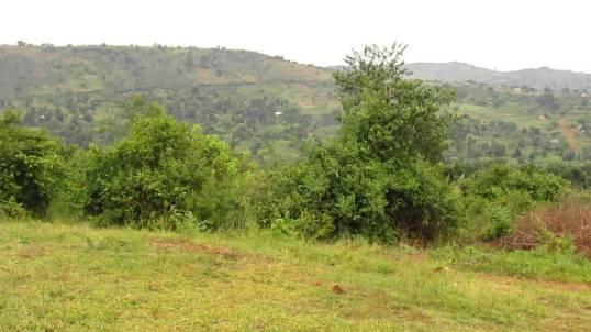 Buyana, Gomba District