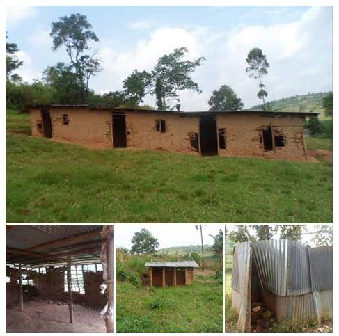 St. Kitzo Primary School, Kabarole