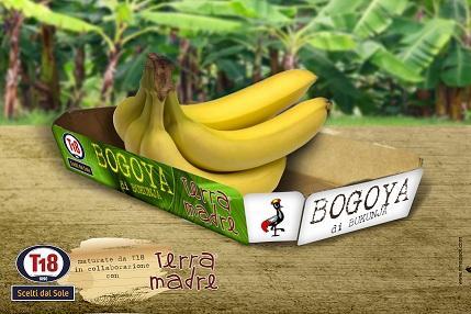 Bogoya