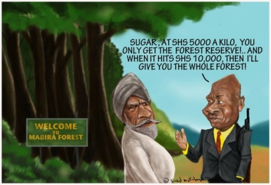 Mabira Forest Cartoon