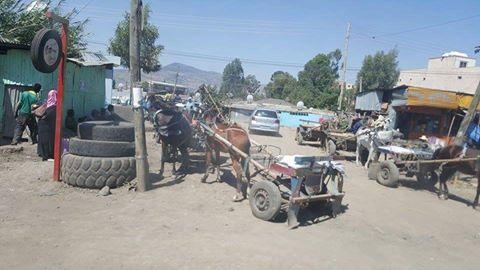 Addis Taxi Strike 02.03. 2016