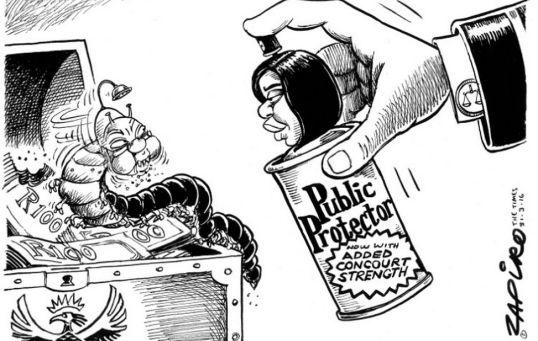 ZAPIRO Public Protector