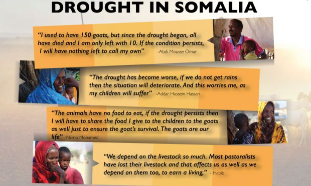 Somalia Draught Quotes