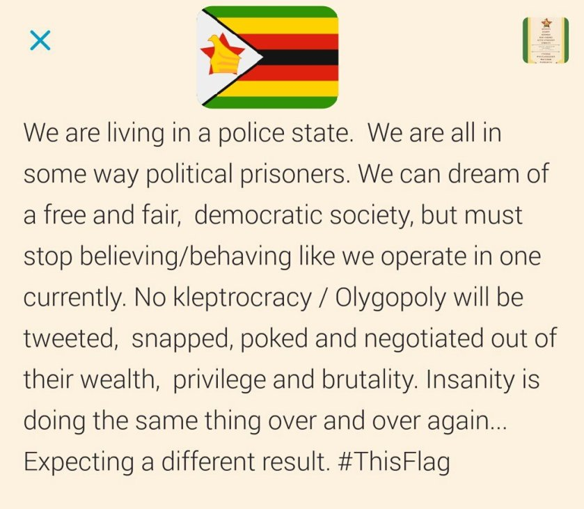 thisflag-police-state-19-11-2016