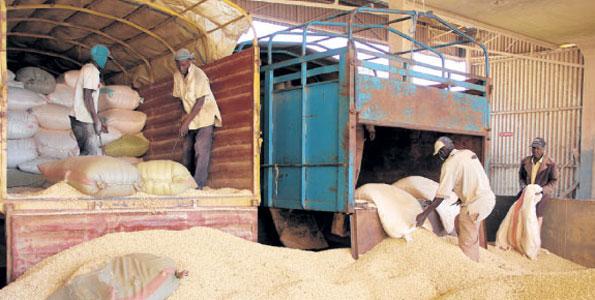eldoret-cereal-warehouse